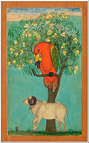 A Parrot Perched on a Mango Tree; a Ram Tethered Below circa 1630-70 from Golconda.