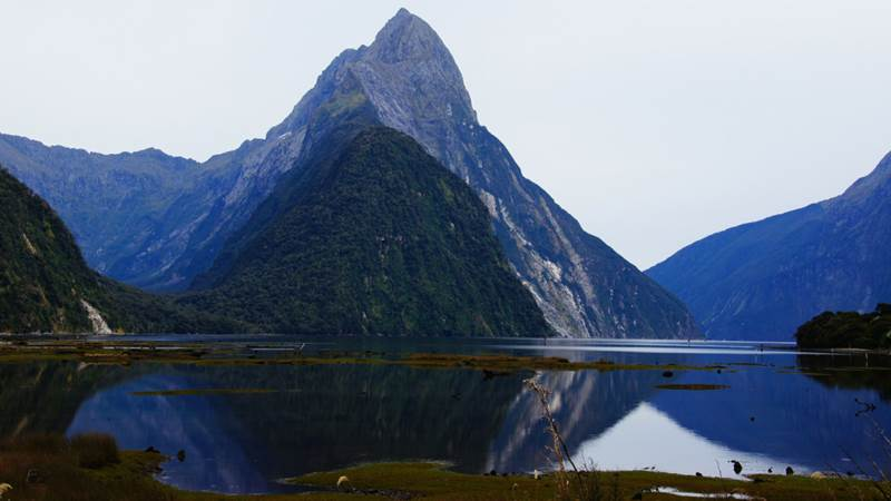 Milford Sound is New Zealand's top tourist destination and it's not hard to see why. With incredible landscapes of waterfalls, mirrored waters, tall peaks and lush rain forests, this fjord has been named by some as the 8th Wonder of the World (not to mention one of the key filming locations for Lord of the Rings). You'll spot incredible wildlife like penguins, whales, dolphins and the rare species of blue duck which is native to New Zealand.