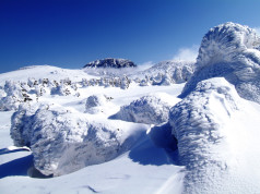 Hallasan National Park covered in snow - spectacular natural designs