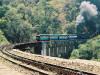 nilgiri-rail
