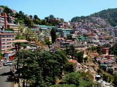 shimla-crowd-