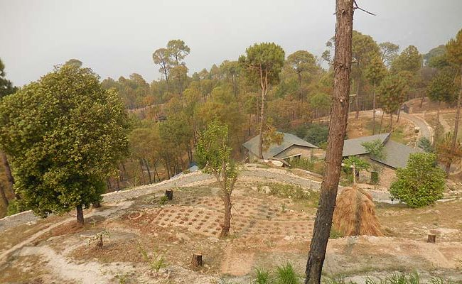 The land is really dry at ranikhet