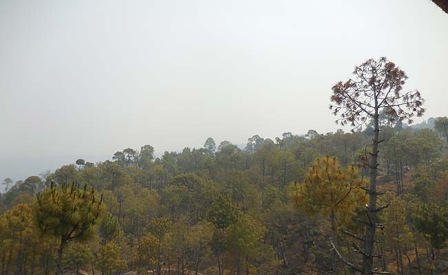 smoke covered hills at Ranikhet