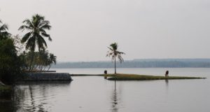 PIC: Panoramio