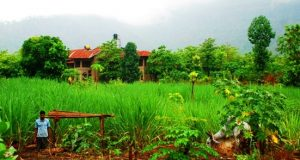 Govardhan Eco village near Thane, Mumbai