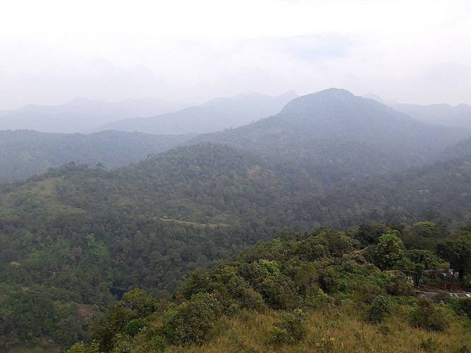 Extensions of NIlgiri hills justify the nameExtensions of NIlgiri hills justify the name