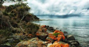 tasmania greens beach image